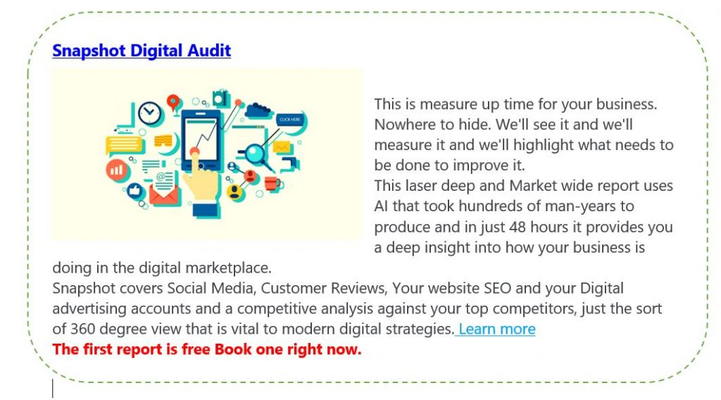 Snapshot Digital Audit